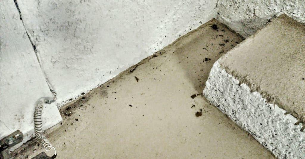 6111 yeats manor drive tampa water accumulation garage floor cracks in stucco lennar construction issues slip hazard 3