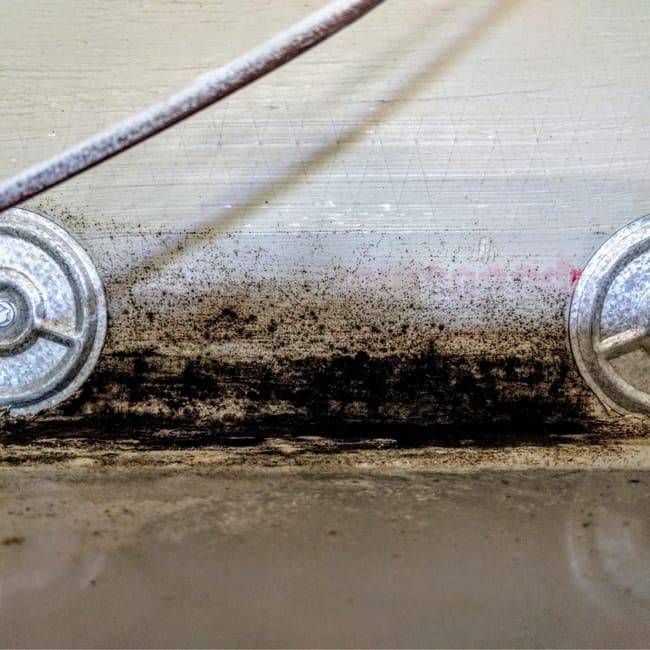 black mold ac unit lennar construction problems mark metheny 2