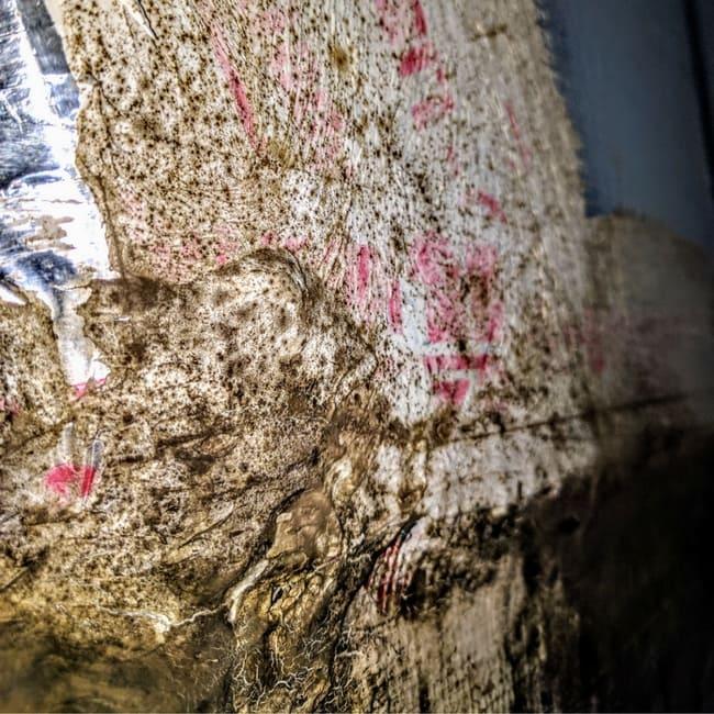 black mold ac unit lennar construction problems mark metheny