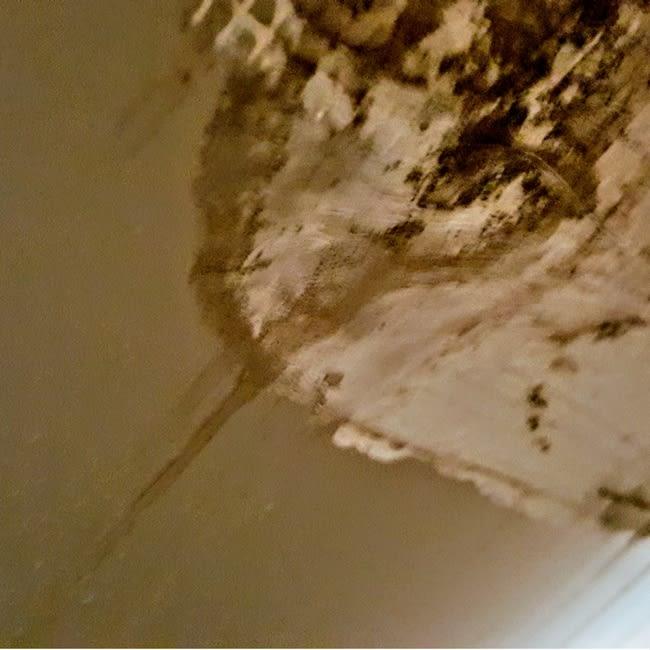 black mold moisture ac unit lennar construction problems mark metheny 2