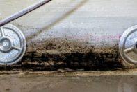 6111 Yeats Manor Drive Tampa lennar inspections mark metheny rick hudack construction issues mold
