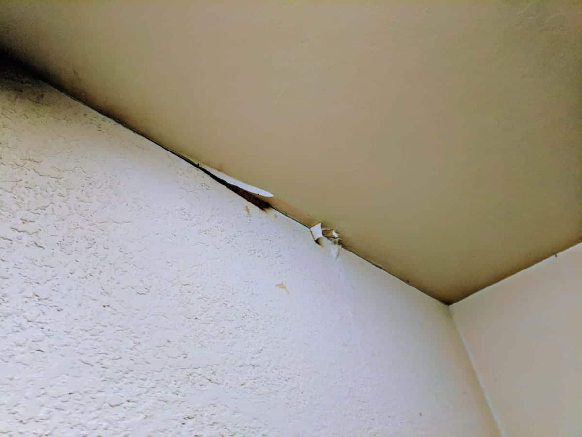 100 ceiling water water damaged ceiling tiles choice image water damage textures damaged garage ceiling u2013 roof flashing my lennar home doublecrazyfo Choice Image