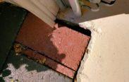 6111 Yeats Manor Drive Tampa Florida garage water intrusion paver lennar construction problems