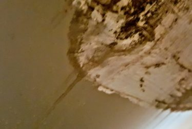 6111 yeats manor mold jim yeadon lennar ac problems mold flood water intrusion