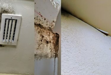water damage mold remediation required lennar construction problems