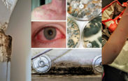 lennar homes florida review mold health issues mark metheny jim yeadon
